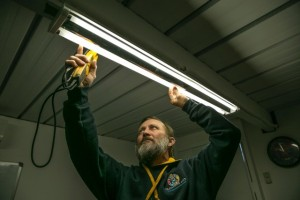 Local Electrician in canberra